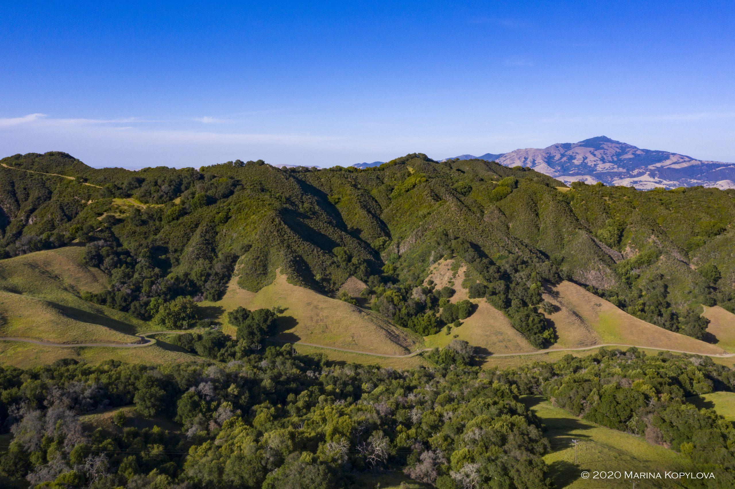 Las Trampas Park San Ramon, California - Spring 2020 - Marina Kopylova